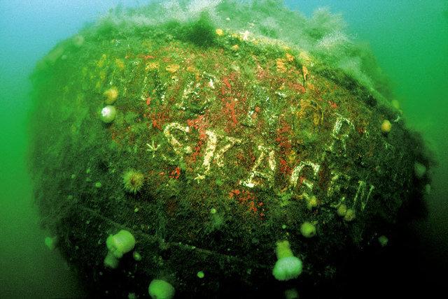 Herlev Dykkerklub Jernlungerne - Dive Club in Denmark